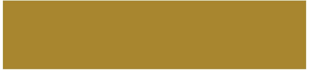 Al Hayaah Brunei